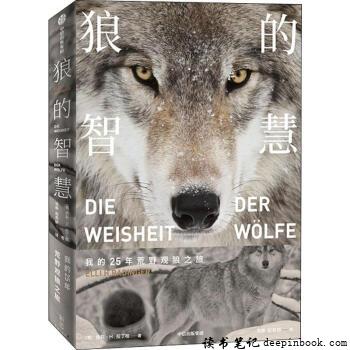 狼的智慧读书笔记