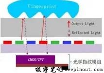 光学指纹原理